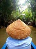 Curso do rio no delta de Mekong fotos de stock royalty free