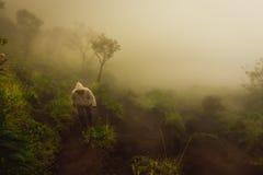 Curso dos povos que caminha até a montanha em Misty Weather Imagem de Stock Royalty Free
