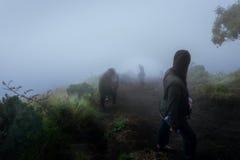 Curso dos povos que caminha até a montanha em Misty Weather Imagem de Stock
