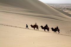 Curso no deserto fotos de stock royalty free
