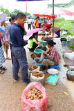 Curso no Lao Fotografia de Stock