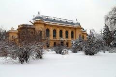 Curso a Romênia: Faculdade de Bucareste de medicina no inverno fotografia de stock royalty free