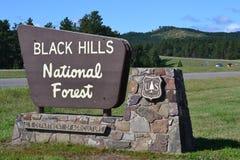 Curso 25 rujir à floresta nacional de Black Hills Foto de Stock Royalty Free