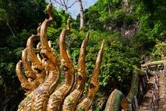 Curso Tailandia O ngulo do ¡ de Trià Dourado-dirigiu a escada dos dragões Fotos de Stock