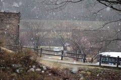 Curso tradicional de Japão da arquitetura da casa da montanha de Shirakawago da árvore do inverno da neve Fotografia de Stock