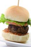 Cursore dell'hamburger Immagini Stock Libere da Diritti