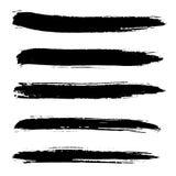 Cursos da escova do vetor da tinta ajustados Ilustração do vetor Textura tirada mão da aquarela do Grunge Imagens de Stock Royalty Free