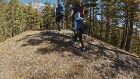 cursos da família Ambiente dos povos por montanhas, rios, córregos Os pais e as crianças andam usando polos trekking homem e filme