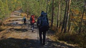 cursos da família Ambiente dos povos por montanhas, rios, córregos Os pais e as crianças andam usando polos trekking homem e video estoque