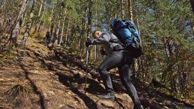 cursos da família Ambiente dos povos por montanhas, rios, córregos Os pais e as crianças andam usando polos trekking homem e vídeos de arquivo