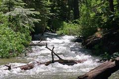 curt wody Zdjęcia Stock