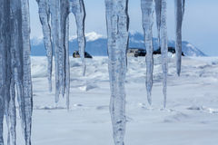Curtain of icicles and tourist expedition on Baikal ice. Stock Image