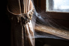 Curtain with spider web Stock Image