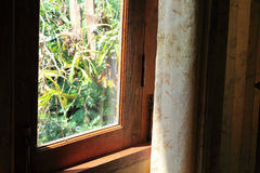 Curtain at the window in morning Royalty Free Stock Photo