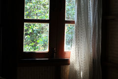 Curtain at the window in morning Stock Photography