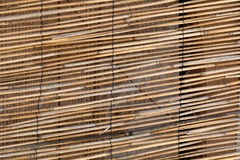 Curtain of yellow brown bamboo stick Stock Image