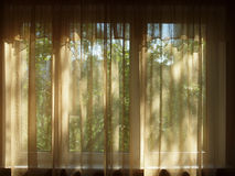 Curtained window in a dark room. Stock Images