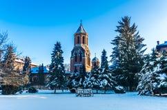Curtea de Arges修道院在冬天,罗马尼亚 免版税库存图片