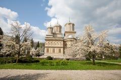 Curtea de Arges monastery, travel, destination. Curtea de Arges monastery in Romania, view from the park Stock Photography