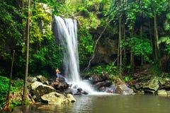 Curtis Falls en el parque nacional de Tamborine del soporte en el Gold Coast Imagen de archivo libre de regalías