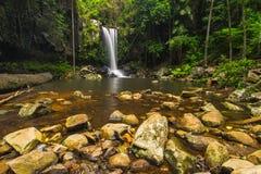 Curtis Falls en el parque nacional de Tamborine del soporte en el Gold Coast Fotografía de archivo