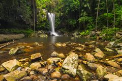 Curtis Falls in Mount Tamborine National Park on the Gold Coast stock photography
