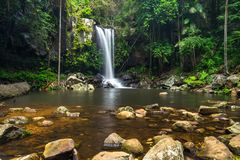 Curtis Falls in Mount Tamborine National Park on the Gold Coast stock photos