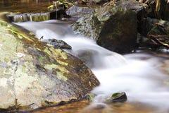 Curtis Falls in Onderstel Tamborine Stock Foto