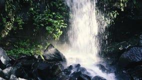 Curtis Falls waterfall stock footage