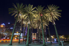 Curtis Hixon Park in Tampa, Florida Royalty Free Stock Photography