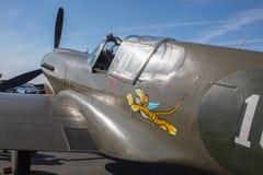 Curtiss P-40 Warhawk kämpe Arkivfoto
