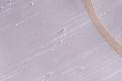 Curva beige sul tessuto bianco di dupion Fotografia Stock