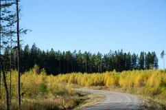 Curva colorida del camino de la grava Fotos de archivo libres de regalías