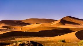 Curva das dunas Imagem de Stock Royalty Free