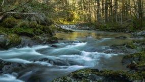 Curva de los ríos Fotografía de archivo libre de regalías