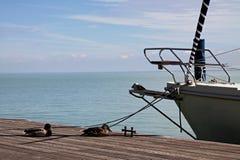 Curva de um veleiro Fotos de Stock