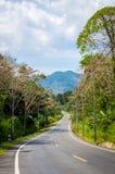 Curva del camino Fotos de archivo