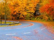 Curva del camino en tiempo colorido del otoño Imagen de archivo libre de regalías