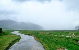 Curva del fiume con il villaggio coltivato in piovoso Immagini Stock