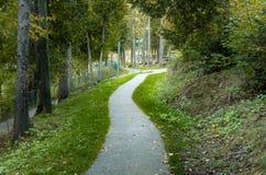 Curva del Forest Footpath fotografie stock