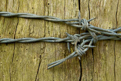 Curva do arame farpado Imagem de Stock