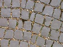 Curva en un camino cobbled Fotografía de archivo