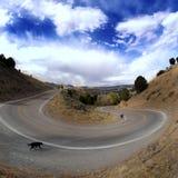 Curva na estrada Fotos de Stock