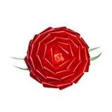 Curva vermelha do presente da roseta Fotografia de Stock Royalty Free