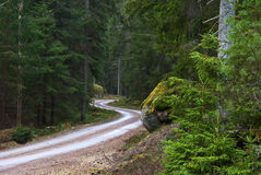 Curvaceous dirt road Royalty Free Stock Photo