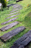 A curvaceous foothpath Royalty Free Stock Images