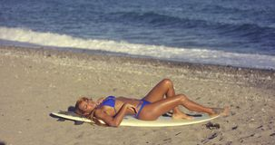 Curvaceous young woman sunbathing on a beach stock video footage