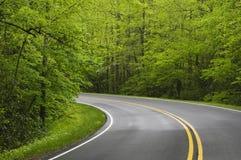 Curvando a estrada Imagens de Stock