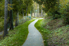 Curvar a Forest Footpath fotos de archivo