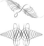 Curvas da simetria da caligrafia. ilustração do vetor
